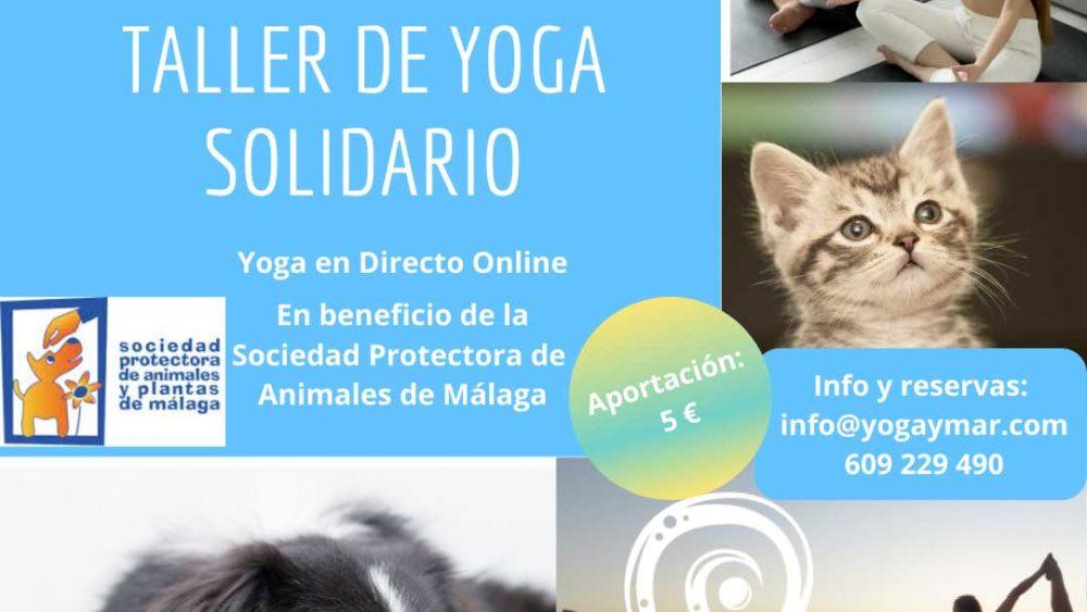 Taller de Yoga Solidario · Yoga & Mar | Yoga para Empresas